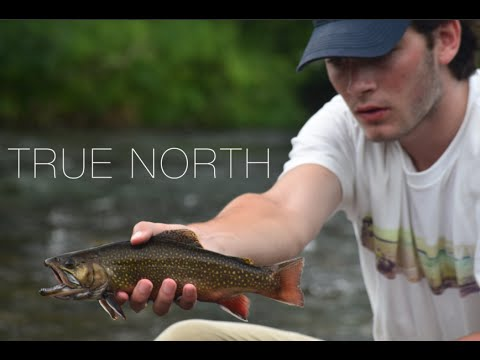 TRUE NORTH - Fly Fishing the Great North Woods