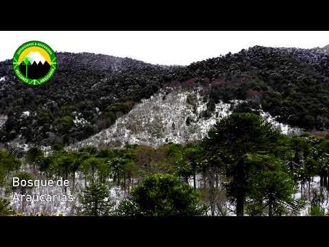Volcanes Araucanía - ¡Ya volverán las aventuras!