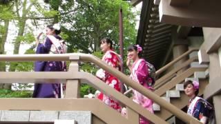 この日は、2016ミス鎌倉の清水美里さん、林梨花さん、野口実穂さんの3人...