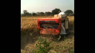 Rice and Wheat cutter Machine at ahmedabad
