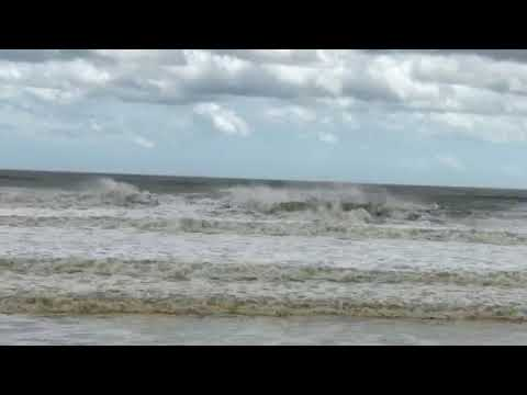 Aftermath of Hurricane Irma Ormond Beach