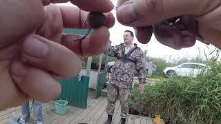 06 10 19 соревнования по рыбной ловле Атомэнергоремонт