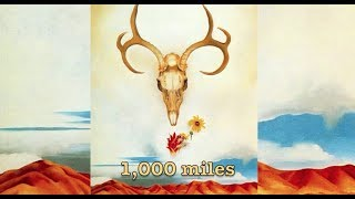 1,000 Miles (lyric video) by The Creature Comfort