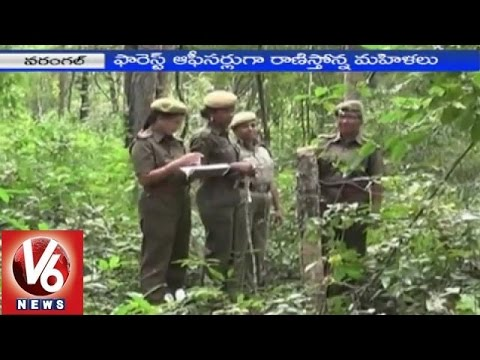 Women dare to work as Forest officers in Warangal | V6 Special Story (08-01-2015)