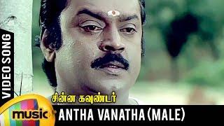 Antha Vanatha Pola Video Song | Male Version | Chinna Gounder Tamil Movie | Vijayakanth | Ilayaraja