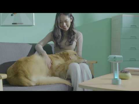 Kcomb 電動寵物吸毛梳 相關視頻