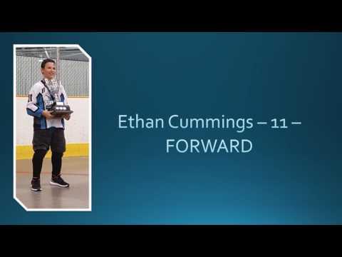 PeeWee 3 Sharpshooters - Surrey Minor Ball Hockey CHAMPIONS June 25, 2017