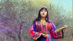dunya ghazal pashto urdu 2018 - Free Music Download