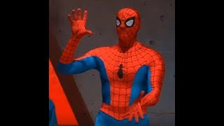 Secret Spider-Man Training Video