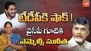 TDP MLC Sunitha Joining YSRCP? | YS Jagan | Chandrababu Naidu | AP Council