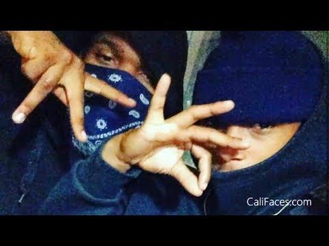 5 Biggest Crip Gangs In Los Angeles