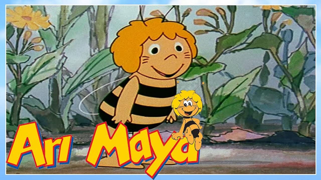 Arı Maya bölüm 32