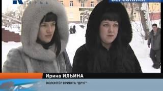 """березниковский приют для собак """"Друг"""""""