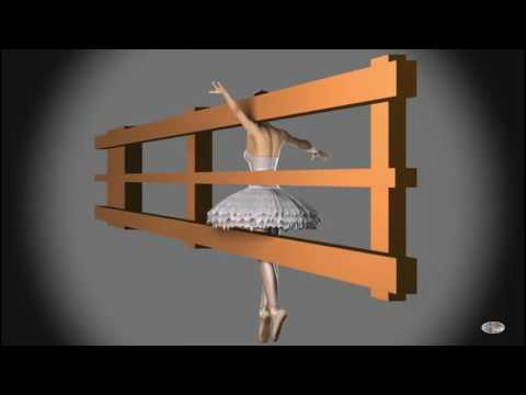 Spinning Dancer - Explanation