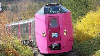 【261系】はまなす編成 特急オホーツク・大雪 動画集 / JR北海道 石北本線
