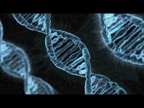 Testy DNA, czyli kobiety zdradzają mimo wiary w Boga i groźby śmierci - braciasamcy.pl