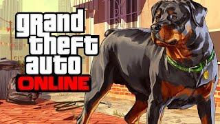 GTA Online (#1) Rock & Ekipa [PS4]