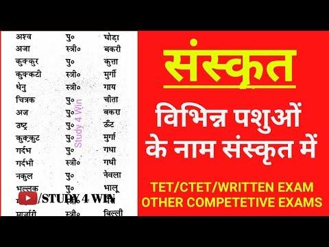 🐹🐼🐿️विभिन्न पशुओं के नाम संस्कृत में|| NAME OF ANIMALS IN SANSKRIT||68500 लिखित परीक्षा