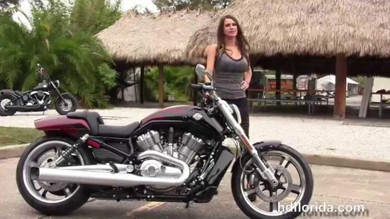 New 2015 Harley Davidson V-Rod Muscle Motorcycles for sale - YouTube