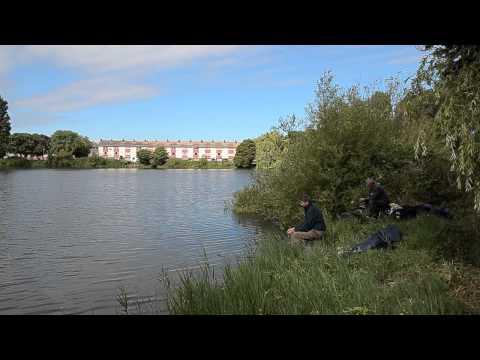 NEWTOWN LAKE, HIGHBRIDGE, SOMERSET