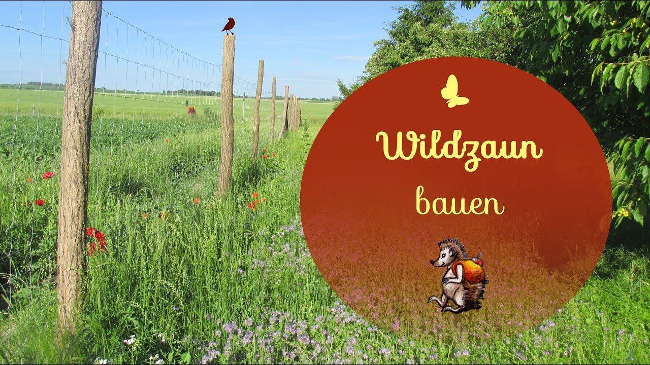 Wildzaun bauen | Wir bauen einen Wildzaun | Gartenzaun - YouTube