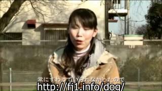 http://fj1.info/dog/ ↑↑『愛犬メアリーがおりこうになる【犬のしつけ】...