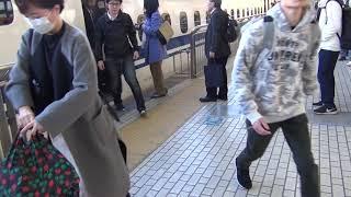 東海道新幹線 朝の通勤ラッシュ 小田原駅 午前7時10分頃 こだま700号東京行き 到着~発車 V2