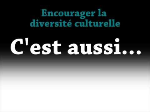 La diversité culturelle, c'est quoi?