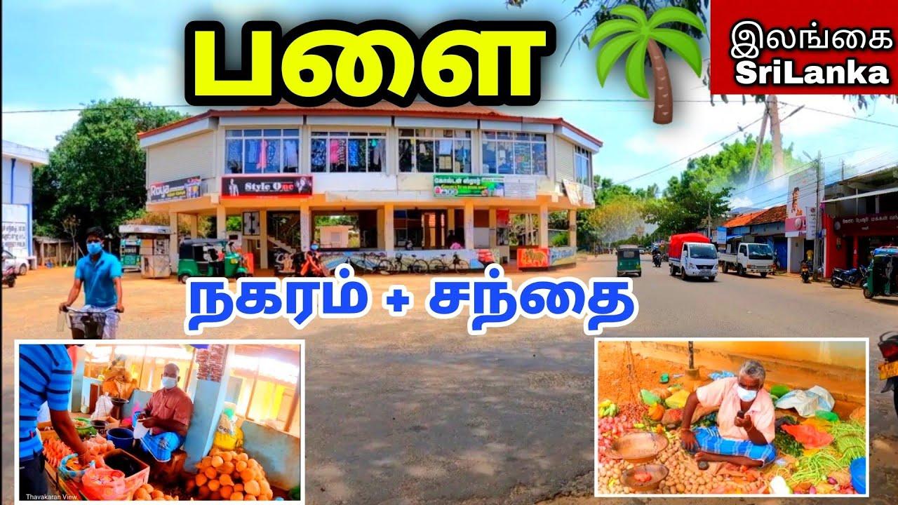 Download பளை நகரம்🏢🏬 +  சந்தை 🍅🐟    கிளிநொச்சி    Palai   Kilinochchi District