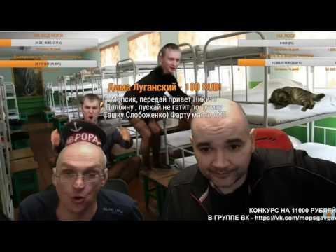 Видео Мопс чат рулетка онлайн