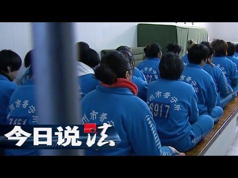 《今日说法》 20171027 不予收押 | CCTV