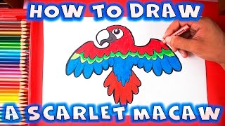 How to Draw a Bird - How to Draw a Scarlet Macaw
