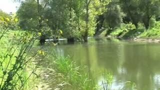 Рыбалка на Дунае -- часть 1(Презентация рыбацкой базы «Дальний кордон» на Дунае. Комфорт, вкусная домашняя кухня, полное уединение..., 2012-09-17T13:38:54.000Z)