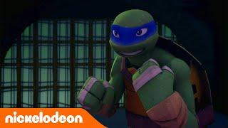 Черепашки-ниндзя | Кто вас этому научил? | Nickelodeon Россия
