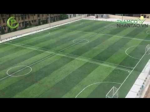 Kinh doanh sân bóng đá cỏ nhân tạo lợi nhuận khổng lồ – Vũ Thư, Thái Bình