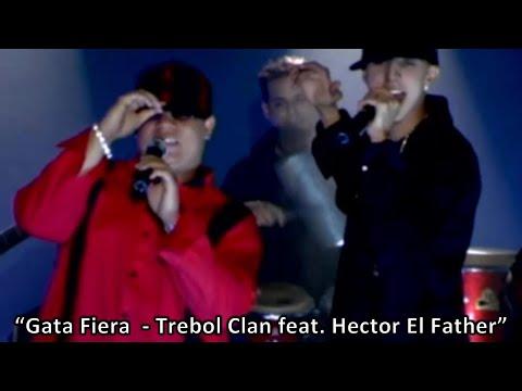 hector el father estan cagaos produced by tainy