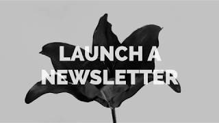 Webinar Takeaways: Secrets of a Successful Newsletter: Lessons from the Lily