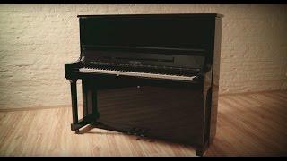Feurich 133 Concert vidéo