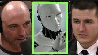 Joe Rogan | Artificial Life vs. Artificial Intelligence w/Lex Fridman