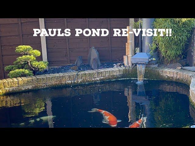3000 gallon Koi Pond Re-Visit **AMAZING KOI**BONSAI**
