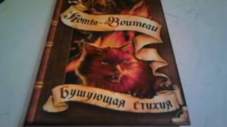 Обзор на книгу Коты Воители Бушующая Стихия 1 част