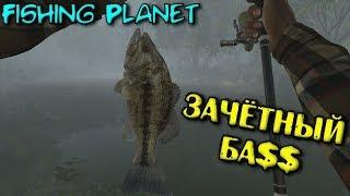 Fishing Planet - Заліковий БА$$ #ПРИКОЛИ,ОДВІРКИ,НЕУЗГОДЖЕНОСТІ, ЛЯПИ#