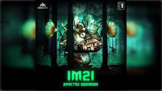 Infected Mushroom - I Wish (Acoustic Live Remix) ᴴᴰ