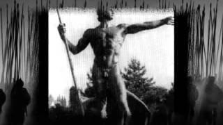 Arditi -- Palingenesis