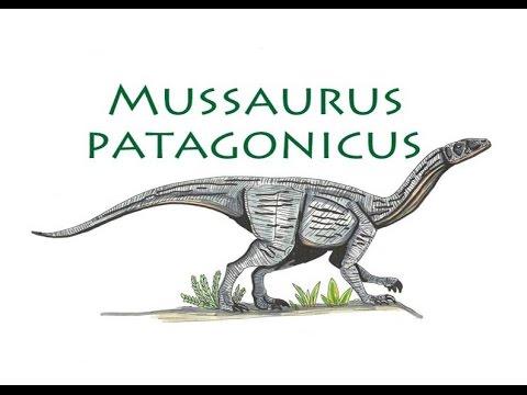 Mussaurus Patagonicus-Narrado en español