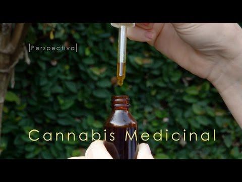 """Marihuana - Cannabis medicinal en Misiones - Informe especial de """"Perspectiva"""""""