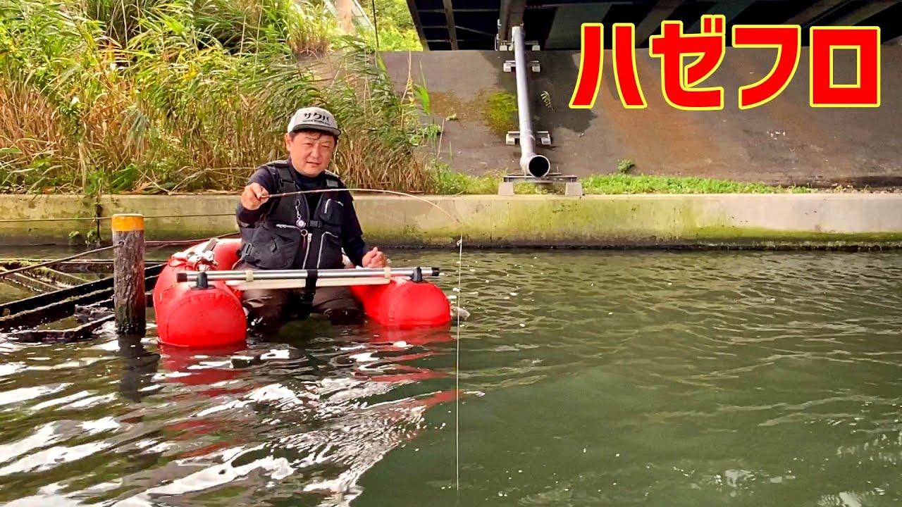 【フローターハゼ釣り】ホタテはこんな感じで使うとよく釣れます!コツは水中でふわっと広がるイメージで