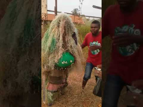 Nkwo Okwe day (Onuimo local government imo state Nigeria)