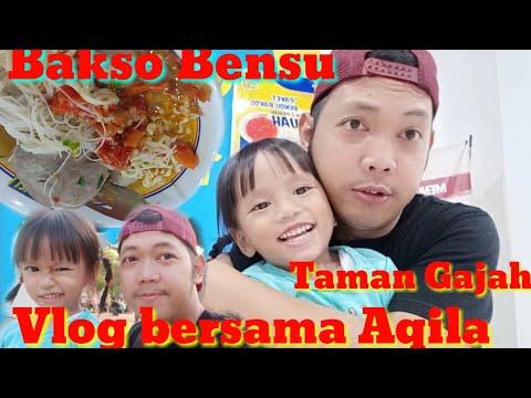 vlog-indonesia---ngvlog-bersama-aqila,-jalan---jalan-ke-taman-gajah-dan-makan-bakso-bensu