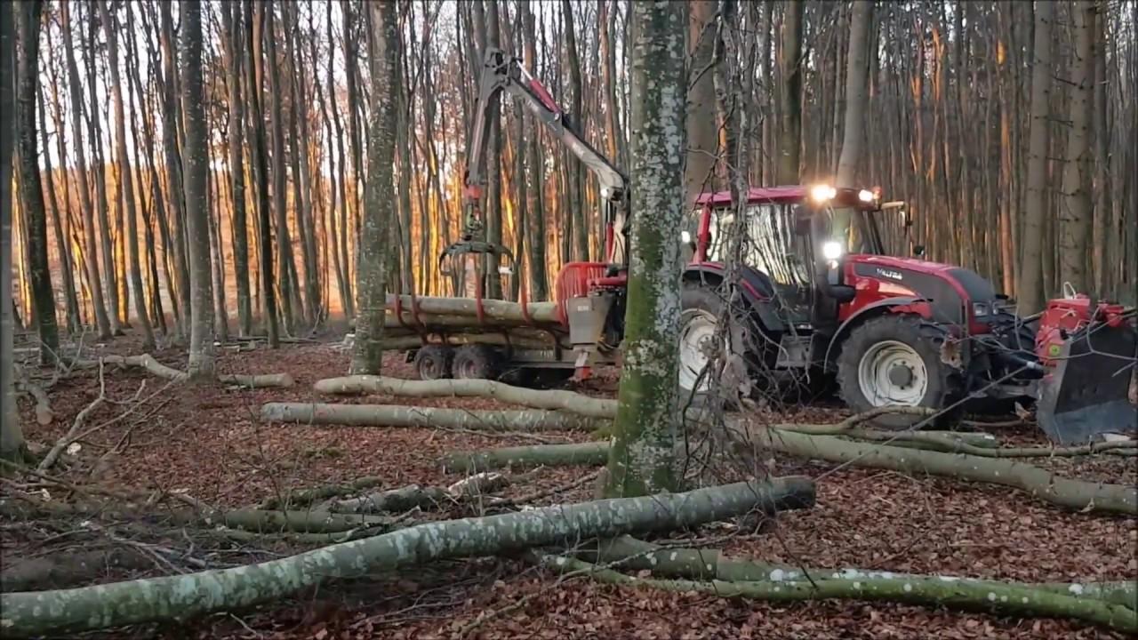 Forstunternehmen Widiner Wir wünschen Ihnen einen guten Rutsch in ...